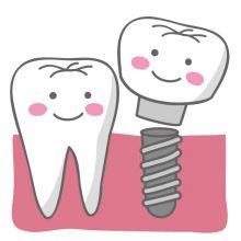 一本の歯にどれだけ価値があるのか
