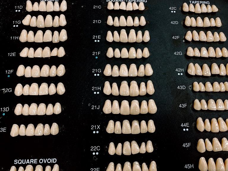 人工の歯並びの選択