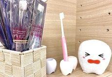 歯磨きの回数と就寝前(寝る前)の歯磨きについて
